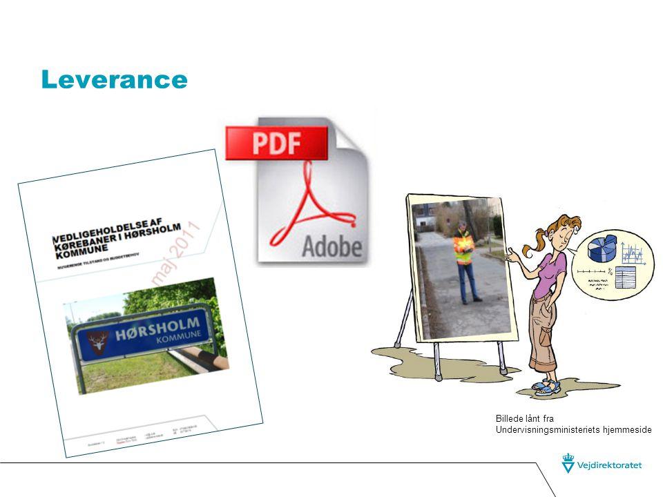Leverance Billede lånt fra Undervisningsministeriets hjemmeside