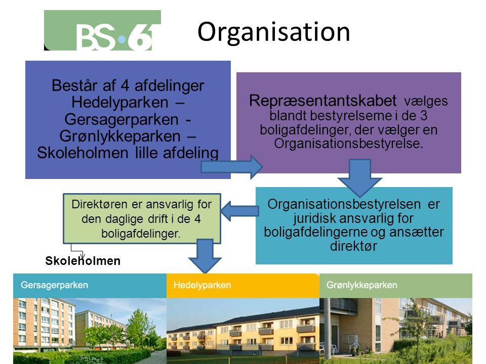 Organisation Direktøren er ansvarlig for den daglige drift i de 4 boligafdelinger. Skoleholmen