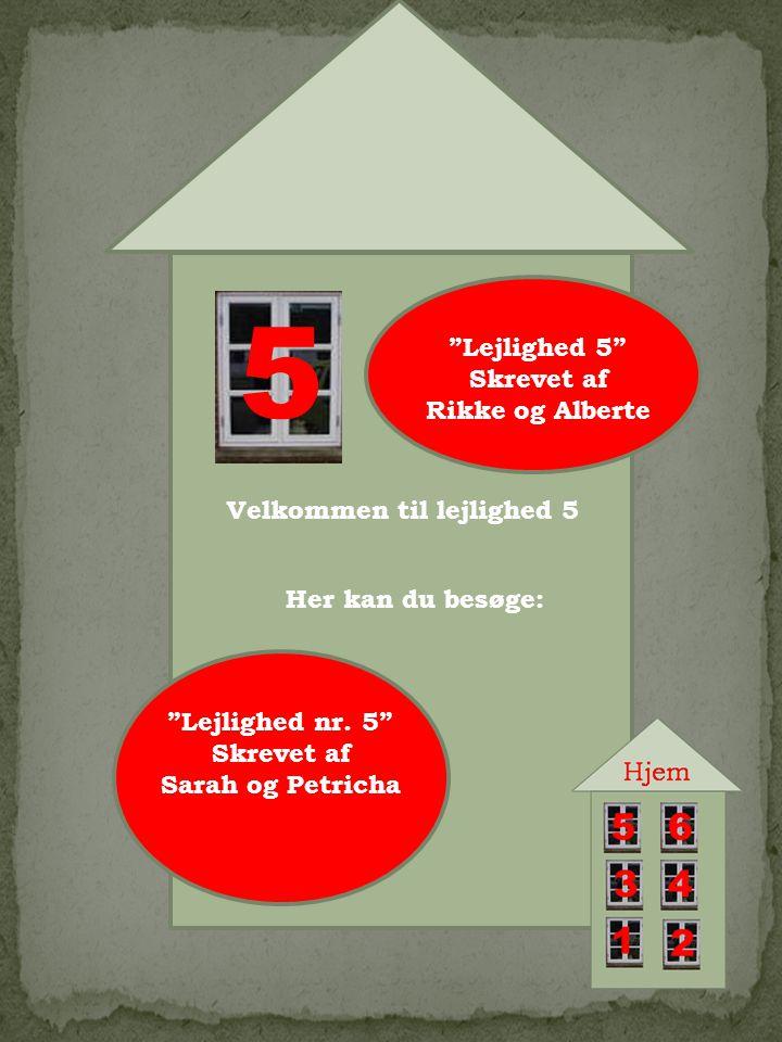 5 Velkommen til lejlighed 5 Her kan du besøge: Lejlighed 5 Skrevet af Rikke og Alberte Lejlighed nr.