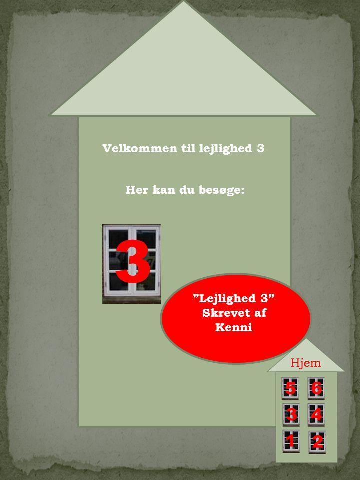 3 Velkommen til lejlighed 3 Her kan du besøge: Lejlighed 3 Skrevet af Kenni