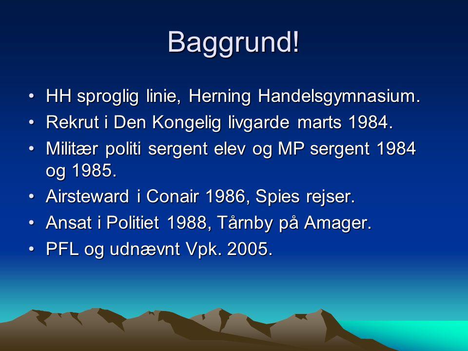 Baggrund.•HH sproglig linie, Herning Handelsgymnasium.