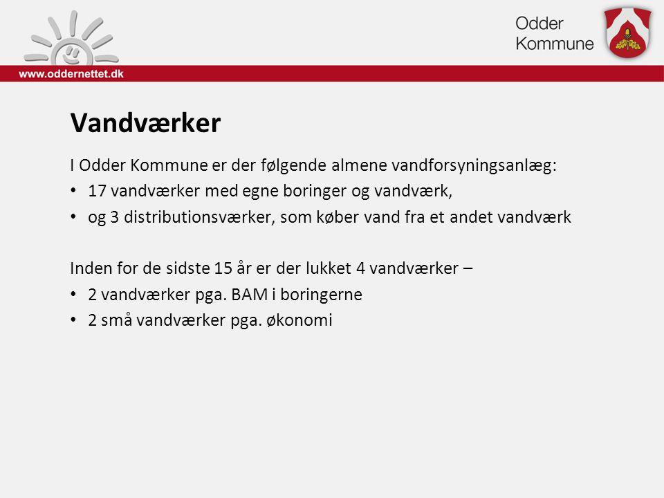 Vandværker I Odder Kommune er der følgende almene vandforsyningsanlæg: • 17 vandværker med egne boringer og vandværk, • og 3 distributionsværker, som