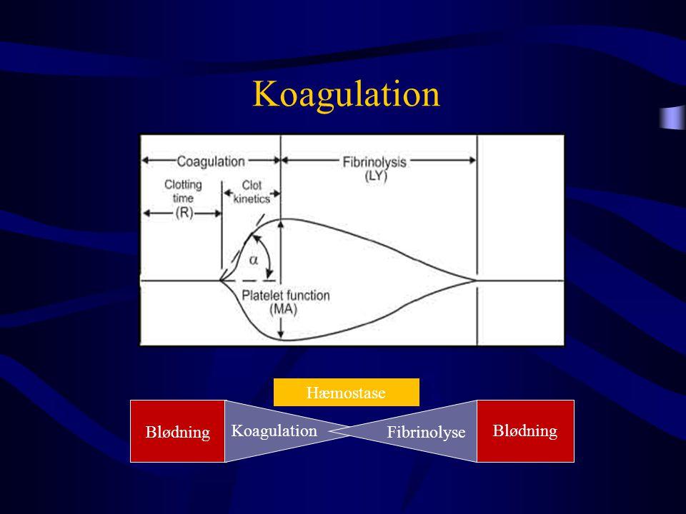 Koagulation Blødning Koagulation Fibrinolyse Hæmostase