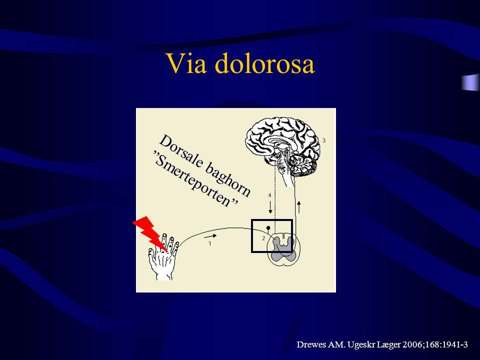 """Via dolorosa Drewes AM. Ugeskr Læger 2006;168:1941-3 Dorsale baghorn """"Smerteporten"""""""