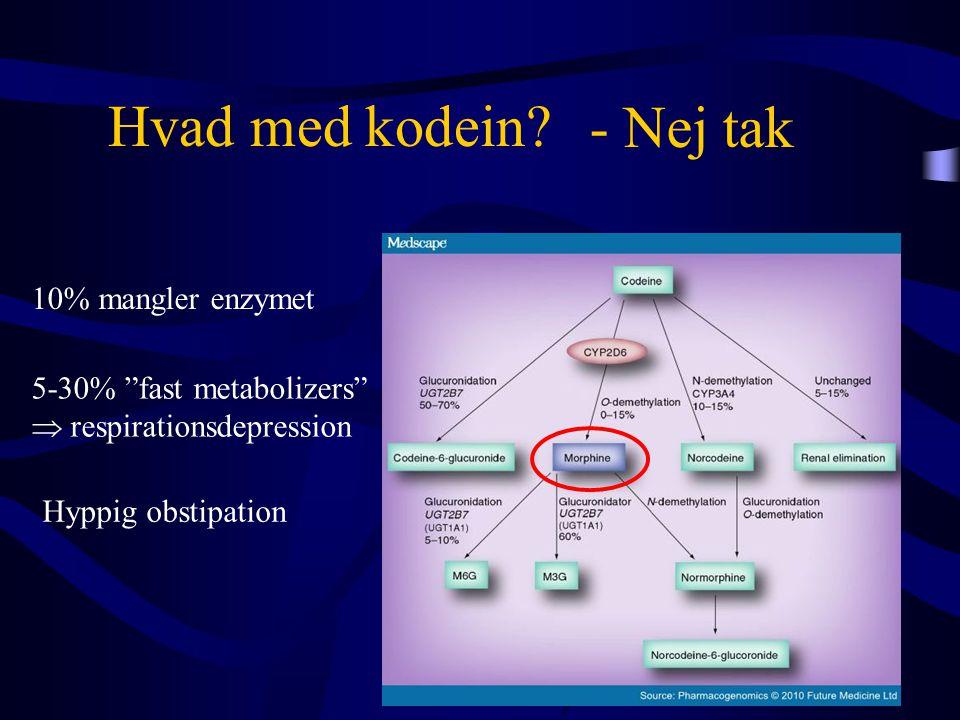"""Hvad med kodein? 10% mangler enzymet 5-30% """"fast metabolizers""""  respirationsdepression Hyppig obstipation - Nej tak"""