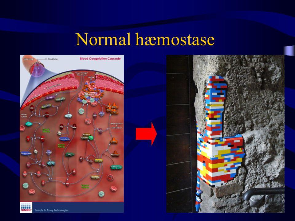 Normal hæmostase