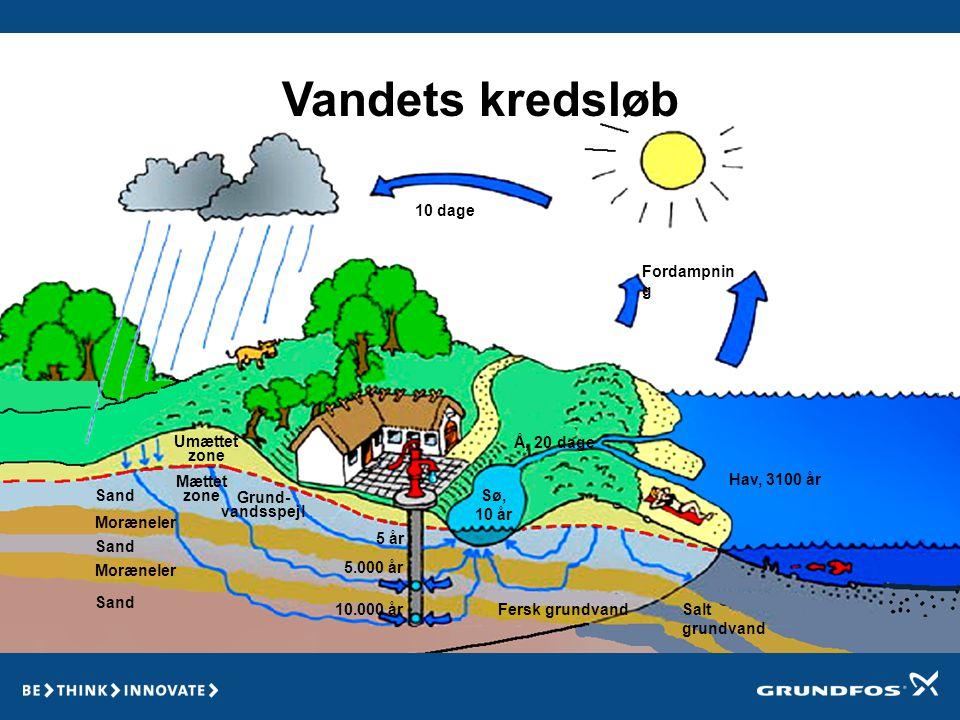 De ting der forurener vandet Regn med urenheder Kilde Lossepla ds Kuldioxid Sump Sø Spildevand Sand Silt Okke r Ler Grus