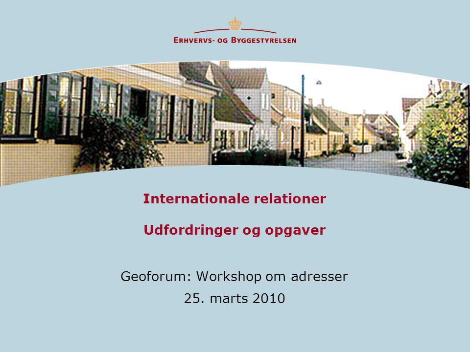 Internationale relationer Udfordringer og opgaver Geoforum: Workshop om adresser 25. marts 2010