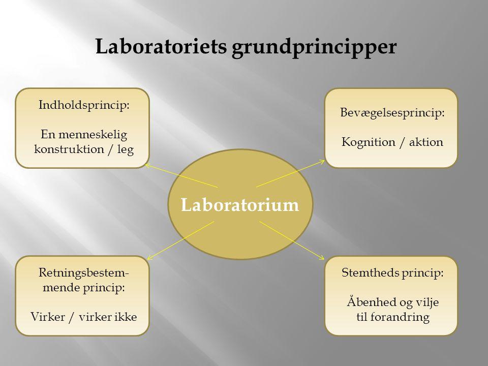 Laboratorium Laboratoriets grundprincipper Retningsbestem- mende princip: Virker / virker ikke Bevægelsesprincip: Kognition / aktion Indholdsprincip: En menneskelig konstruktion / leg Stemtheds princip: Åbenhed og vilje til forandring