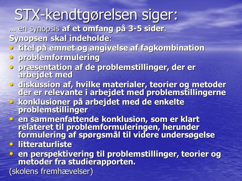 STX-kendtgørelsen siger: … en synopsis af et omfang på 3-5 sider.