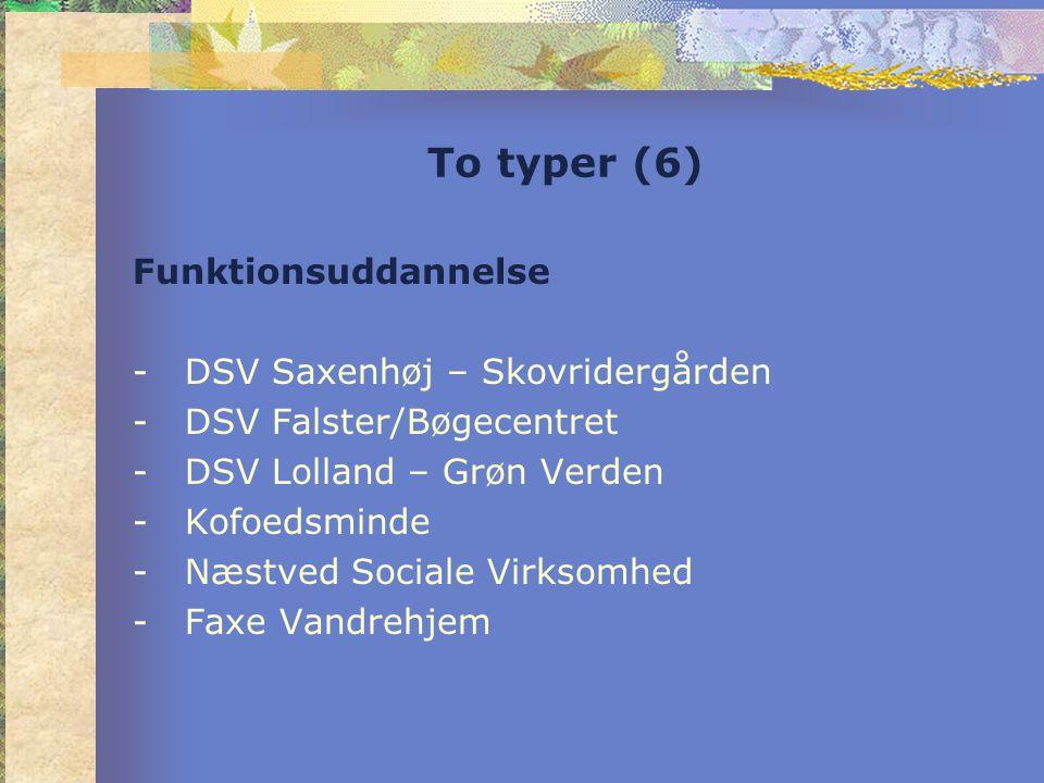 To typer (6) Funktionsuddannelse -DSV Saxenhøj – Skovridergården -DSV Falster/Bøgecentret -DSV Lolland – Grøn Verden -Kofoedsminde -Næstved Sociale Virksomhed -Faxe Vandrehjem