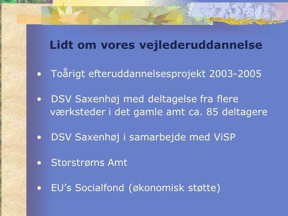 Lidt om vores vejlederuddannelse •Toårigt efteruddannelsesprojekt 2003-2005 •DSV Saxenhøj med deltagelse fra flere værksteder i det gamle amt ca.