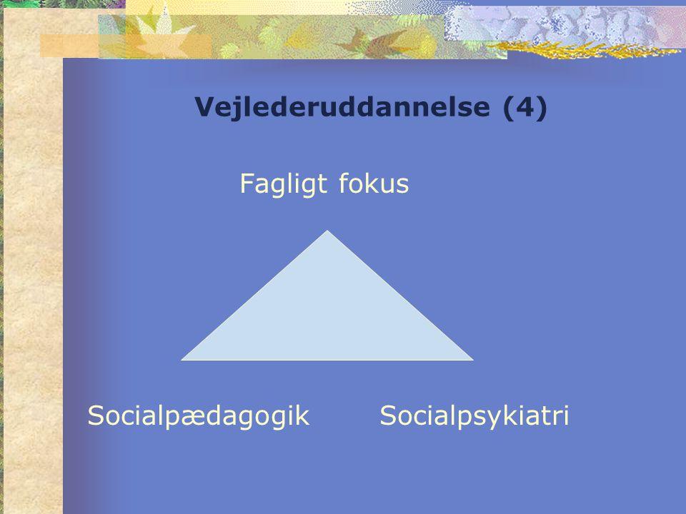 Vejlederuddannelse (4) Fagligt fokus Socialpædagogik Socialpsykiatri