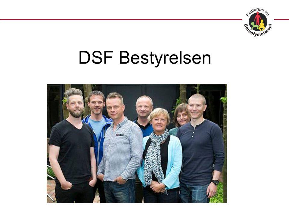 DSF Bestyrelsen