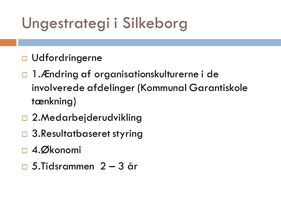 Ungestrategi i Silkeborg  Udfordringerne  1.Ændring af organisationskulturerne i de involverede afdelinger (Kommunal Garantiskole tænkning)  2.Medarbejderudvikling  3.Resultatbaseret styring  4.Økonomi  5.Tidsrammen 2 – 3 år
