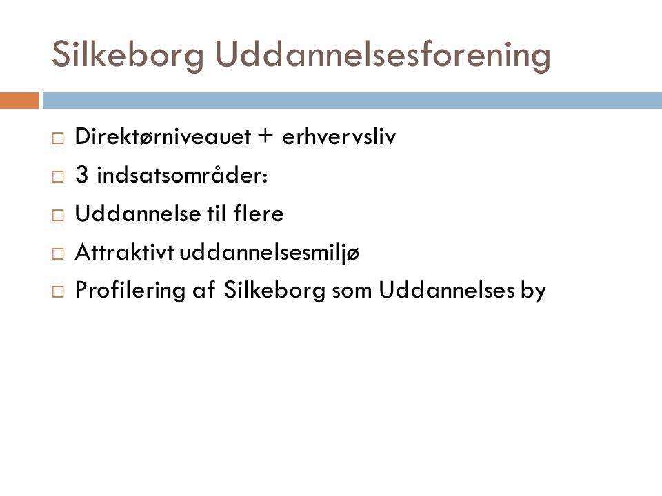 Silkeborg Uddannelsesforening  Direktørniveauet + erhvervsliv  3 indsatsområder:  Uddannelse til flere  Attraktivt uddannelsesmiljø  Profilering af Silkeborg som Uddannelses by
