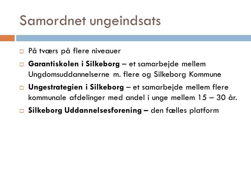 Samordnet ungeindsats  På tværs på flere niveauer  Garantiskolen i Silkeborg – et samarbejde mellem Ungdomsuddannelserne m.
