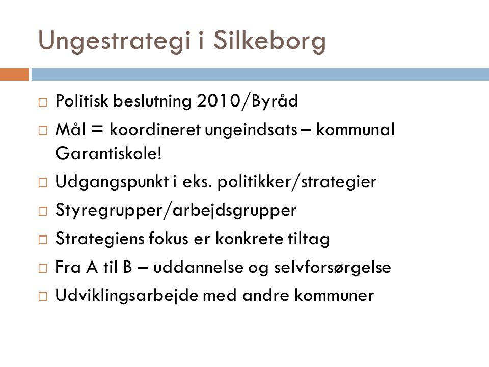 Ungestrategi i Silkeborg  Politisk beslutning 2010/Byråd  Mål = koordineret ungeindsats – kommunal Garantiskole.