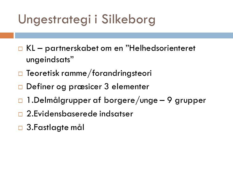 Ungestrategi i Silkeborg  KL – partnerskabet om en Helhedsorienteret ungeindsats  Teoretisk ramme/forandringsteori  Definer og præsicer 3 elementer  1.Delmålgrupper af borgere/unge – 9 grupper  2.Evidensbaserede indsatser  3.Fastlagte mål