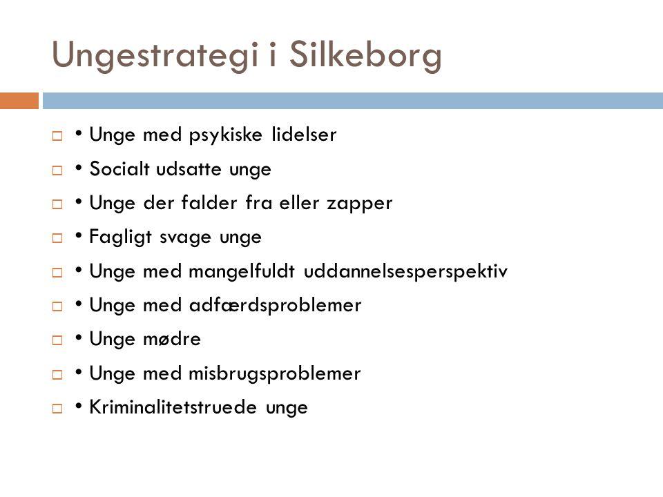 Ungestrategi i Silkeborg  • Unge med psykiske lidelser  • Socialt udsatte unge  • Unge der falder fra eller zapper  • Fagligt svage unge  • Unge med mangelfuldt uddannelsesperspektiv  • Unge med adfærdsproblemer  • Unge mødre  • Unge med misbrugsproblemer  • Kriminalitetstruede unge