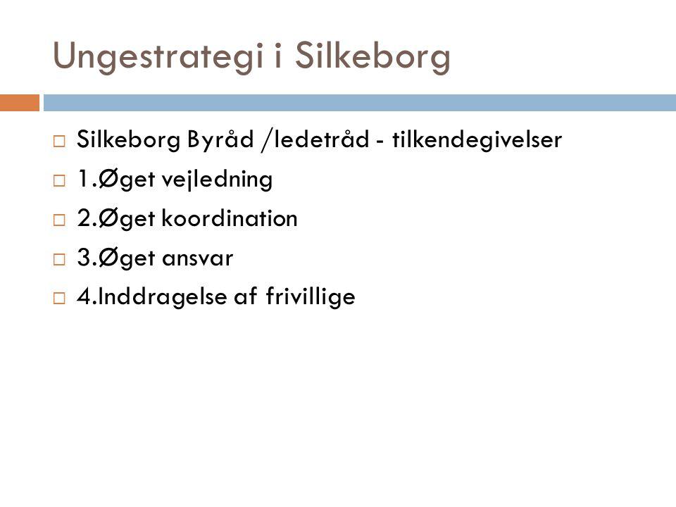 Ungestrategi i Silkeborg  Silkeborg Byråd /ledetråd - tilkendegivelser  1.Øget vejledning  2.Øget koordination  3.Øget ansvar  4.Inddragelse af frivillige