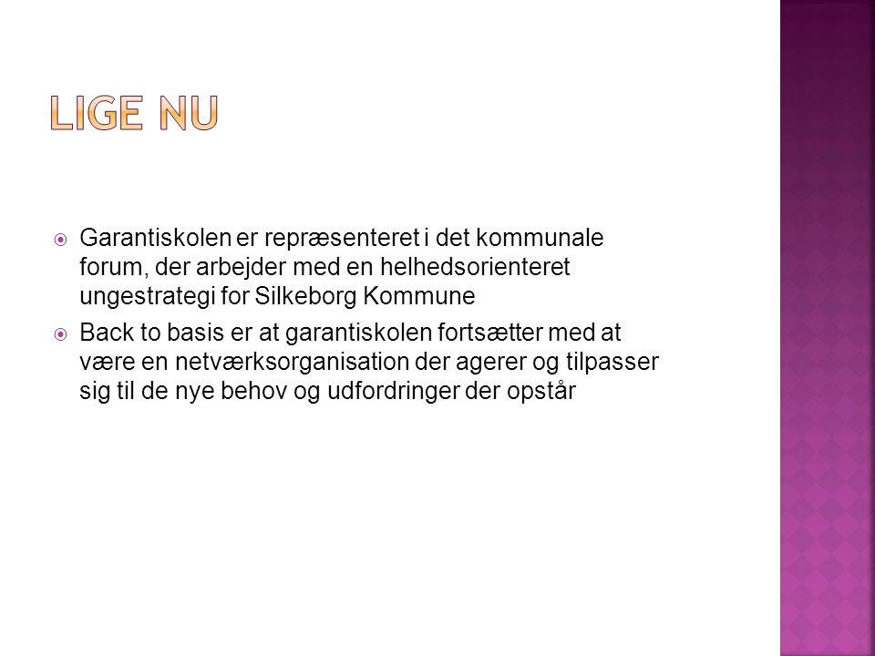  Garantiskolen er repræsenteret i det kommunale forum, der arbejder med en helhedsorienteret ungestrategi for Silkeborg Kommune  Back to basis er at garantiskolen fortsætter med at være en netværksorganisation der agerer og tilpasser sig til de nye behov og udfordringer der opstår