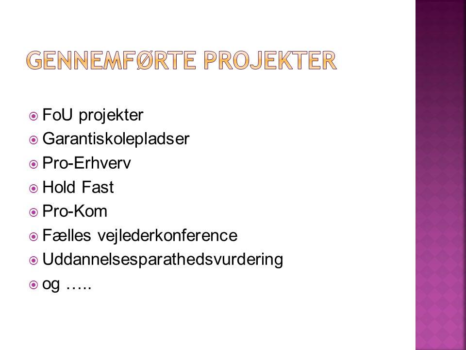  FoU projekter  Garantiskolepladser  Pro-Erhverv  Hold Fast  Pro-Kom  Fælles vejlederkonference  Uddannelsesparathedsvurdering  og …..