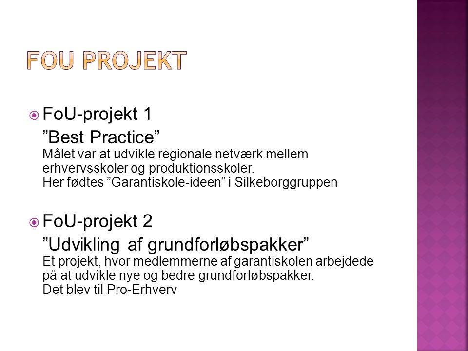  FoU-projekt 1 Best Practice Målet var at udvikle regionale netværk mellem erhvervsskoler og produktionsskoler.