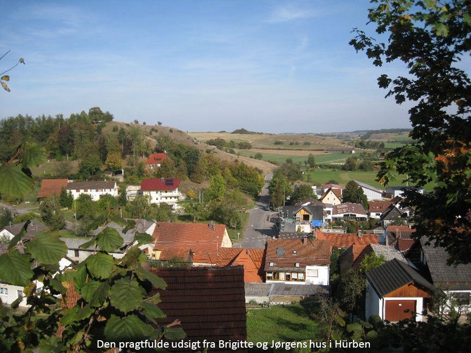 Den pragtfulde udsigt fra Brigitte og Jørgens hus i Hürben