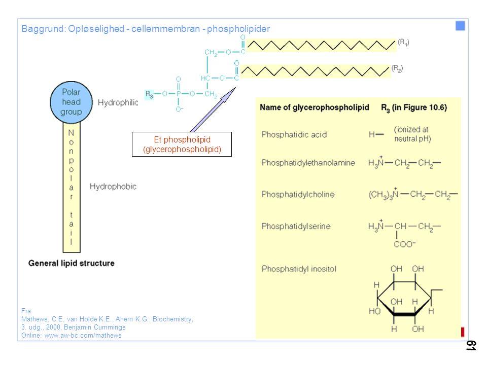 Fra: Lodish, H.; Berk, A.; Zipursky, S.L.; Matsudaira, P.; Baltimore, D.; Darnell, J.E.: Molecular Cell Biology, 4.