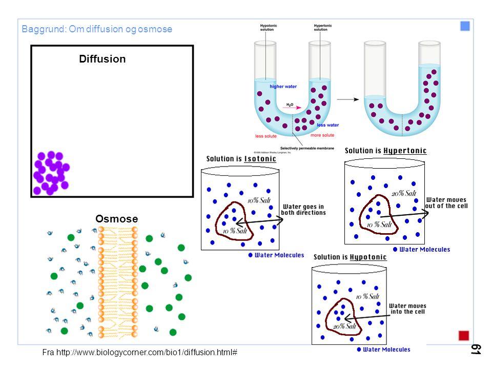 Cellekerne, DNA og proteindannelse Fra: Mathews, C.E, van Holde K.E., Ahern K.G.: Biochemistry, 3.