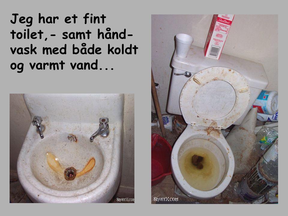 Jeg har et fint toilet,- samt hånd- vask med både koldt og varmt vand...