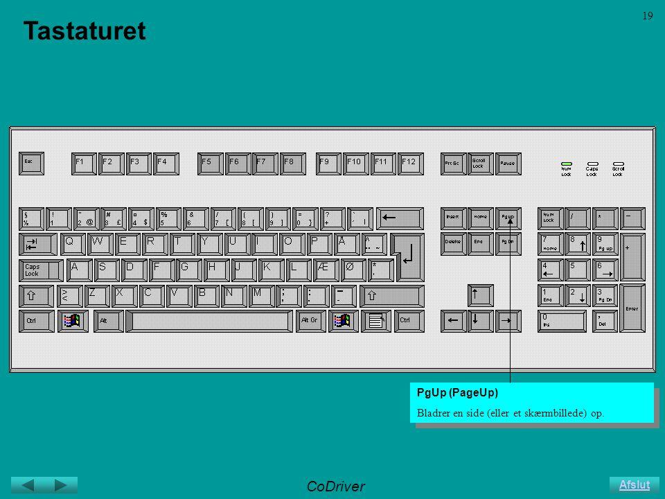 CoDriver Afslut 19 Tastaturet PgUp (PageUp) Bladrer en side (eller et skærmbillede) op.