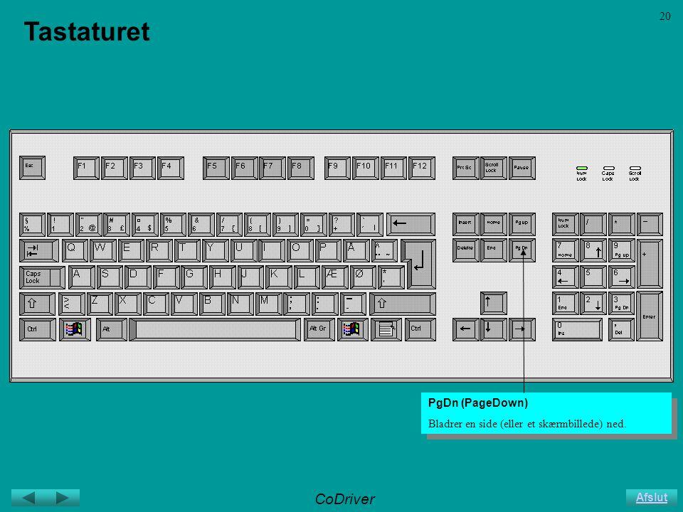 CoDriver Afslut 20 Tastaturet PgDn (PageDown) Bladrer en side (eller et skærmbillede) ned.