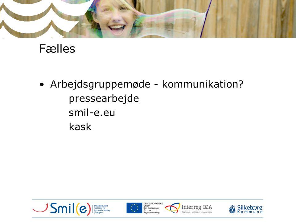 Fælles •Arbejdsgruppemøde - kommunikation pressearbejde smil-e.eu kask