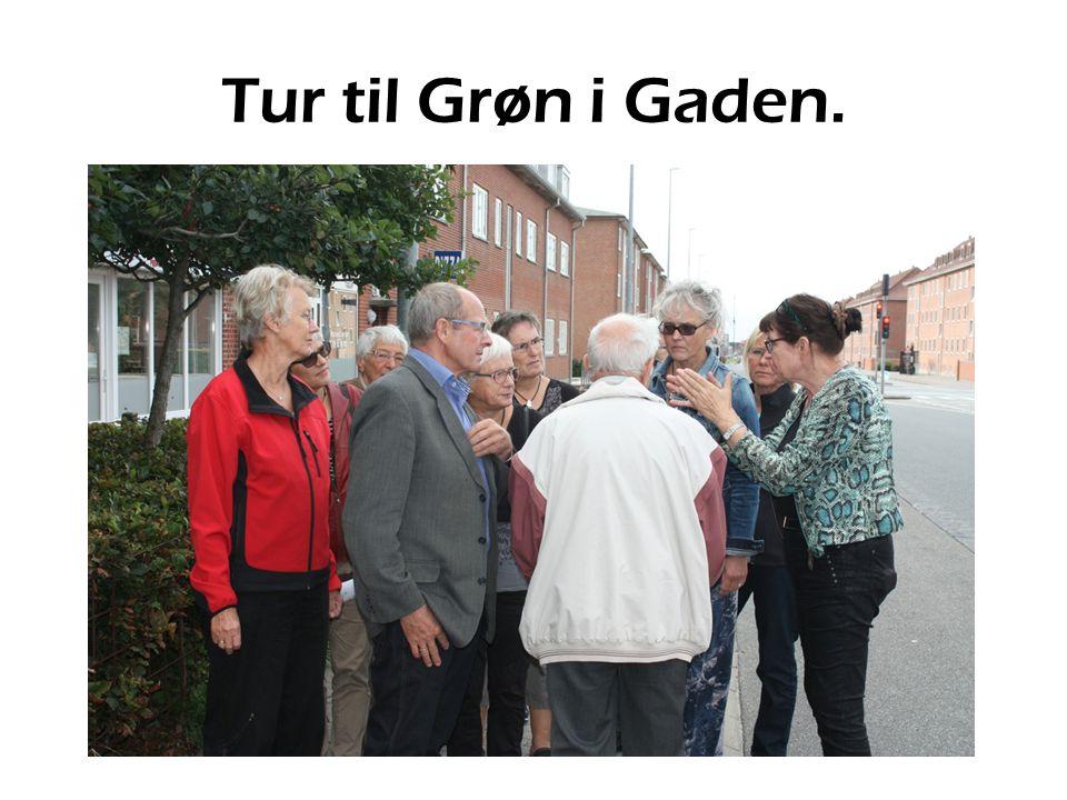 Tur til Grøn i Gaden.