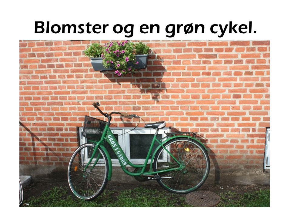 Blomster og en grøn cykel.