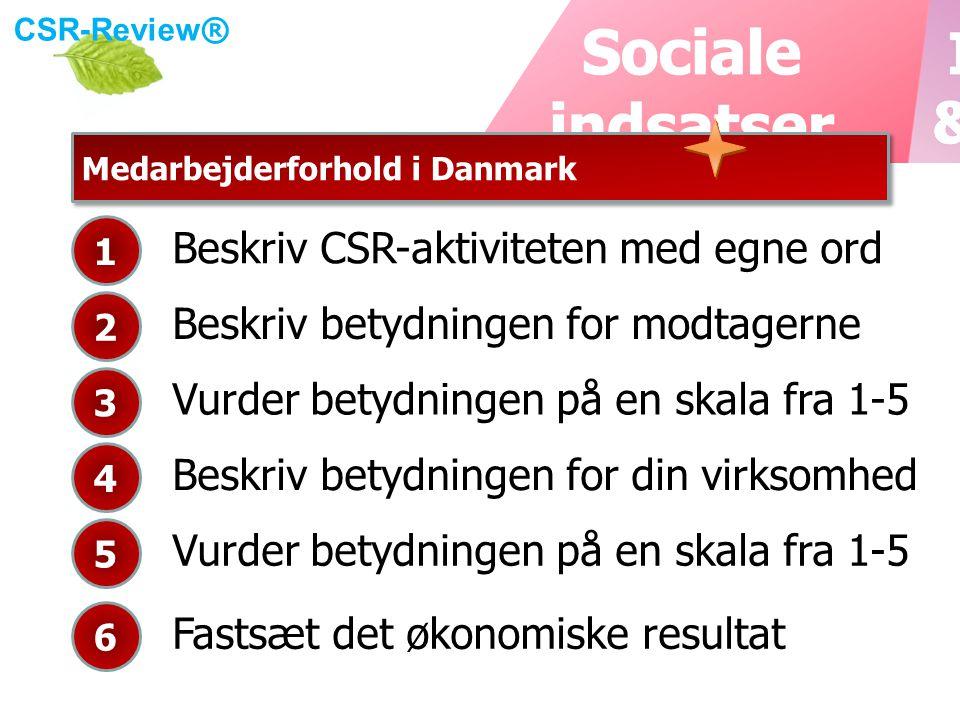 CSR-Review ® Medarbejderforhold i Danmark Beskriv CSR-aktiviteten med egne ord 1 Beskriv betydningen for modtagerne 2 Vurder betydningen på en skala fra 1-5 3 Beskriv betydningen for din virksomhed 4 Vurder betydningen på en skala fra 1-5 5 Fastsæt det økonomiske resultat 6