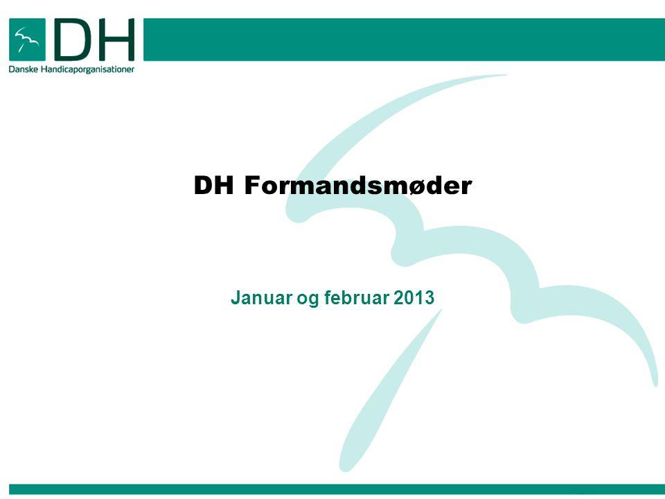 DH Formandsmøder Januar og februar 2013