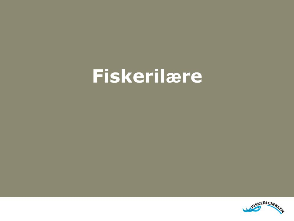 Fiskeril æ re