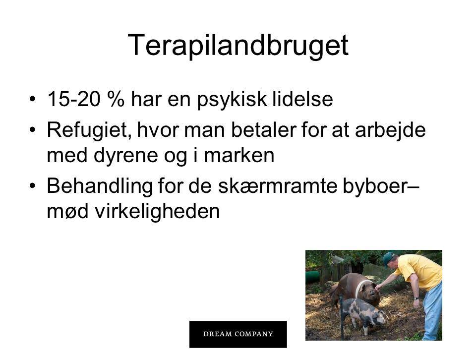 Terapilandbruget •15-20 % har en psykisk lidelse •Refugiet, hvor man betaler for at arbejde med dyrene og i marken •Behandling for de skærmramte byboer– mød virkeligheden