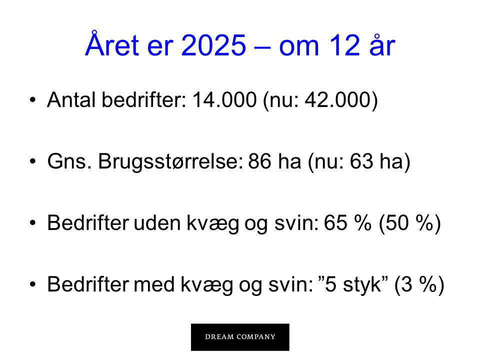 Året er 2025 – om 12 år •Antal bedrifter: 14.000 (nu: 42.000) •Gns.