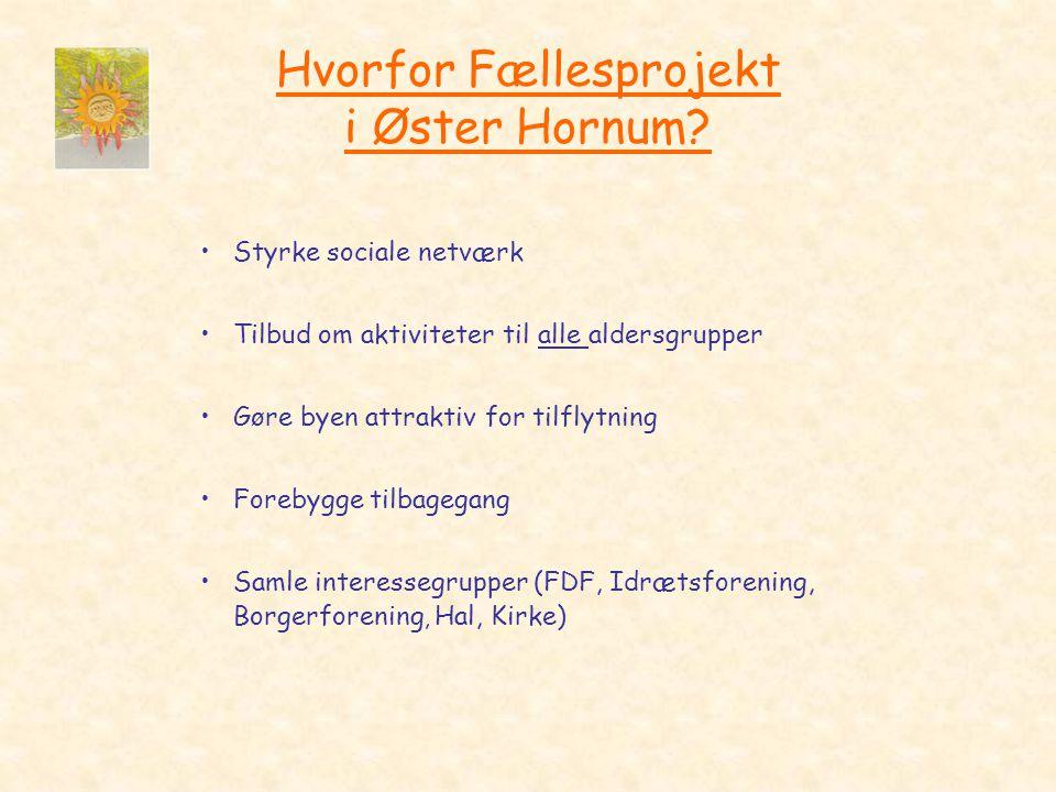 Hvorfor Fællesprojekt i Øster Hornum.
