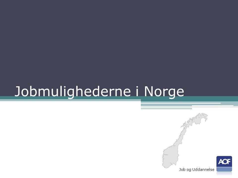 Jobmulighederne i Norge Job og Uddannelse