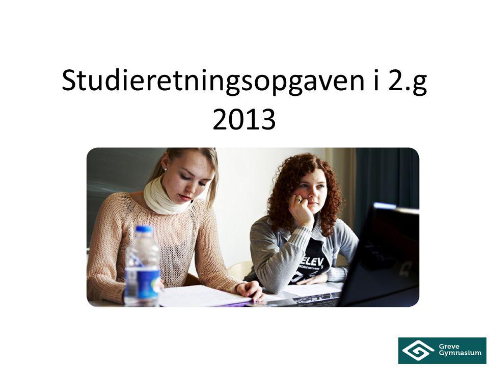 Studieretningsopgaven i 2.g 2013