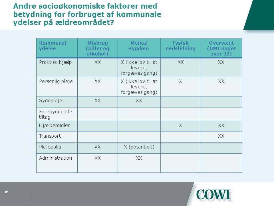 # Andre socioøkonomiske faktorer med betydning for forbruget af kommunale ydelser på ældreområdet.
