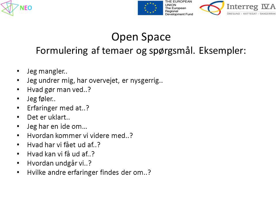 Open Space Formulering af temaer og spørgsmål. Eksempler: • Jeg mangler..