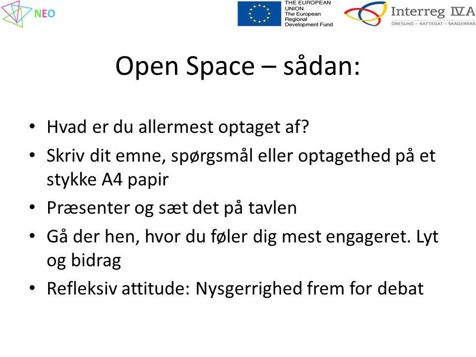 Open Space – sådan: • Hvad er du allermest optaget af.