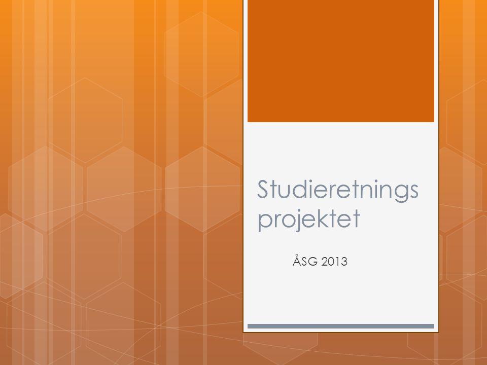 Studieretnings projektet ÅSG 2013
