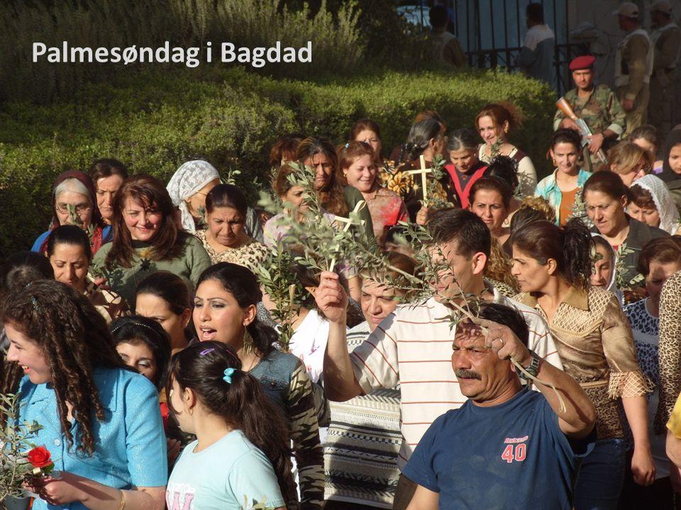 Palmesøndag i Bagdad